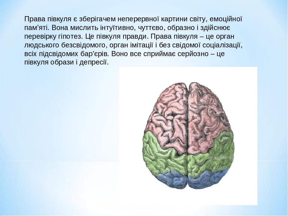 Права півкуля є зберігачем неперервної картини світу, емоційної пам'яті. Вона мислить інтуїтивно, чуттєво, образно і здійснює перевірку гіпотез. Це...