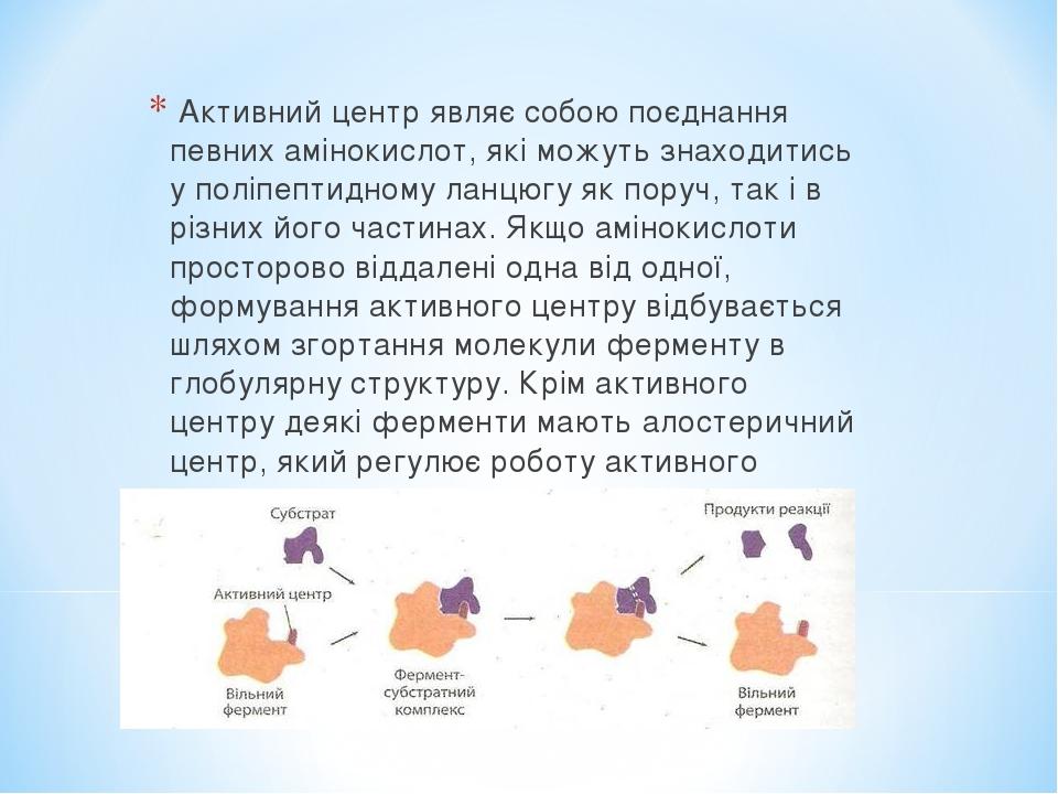 Активний центр являє собою поєднання певних амінокислот, які можуть знаходитись у поліпептидному ланцюгу як поруч, так і в різних його частинах. Як...