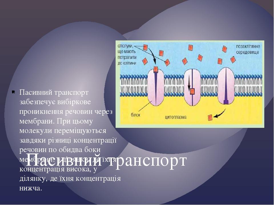 Пасивний транспорт забезпечує вибіркове проникнення речовин через мембрани. При цьому молекули переміщуються завдяки різниці концентрації речовин п...