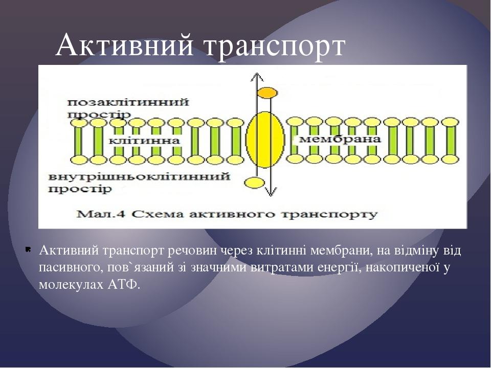Активний транспорт речовин через клітинні мембрани, на відміну від пасивного, пов`язаний зі значними витратами енергії, накопиченої у молекулах АТФ...