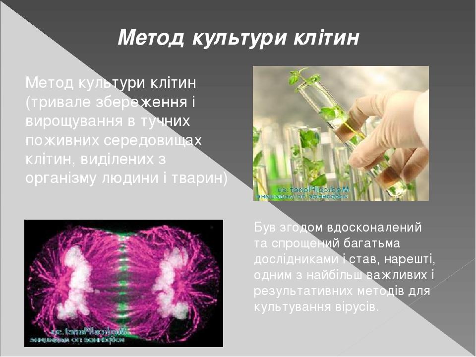 Метод культури клітин Метод культури клітин (тривале збереження і вирощування в тучних поживних середовищах клітин, виділених з організму людини і ...
