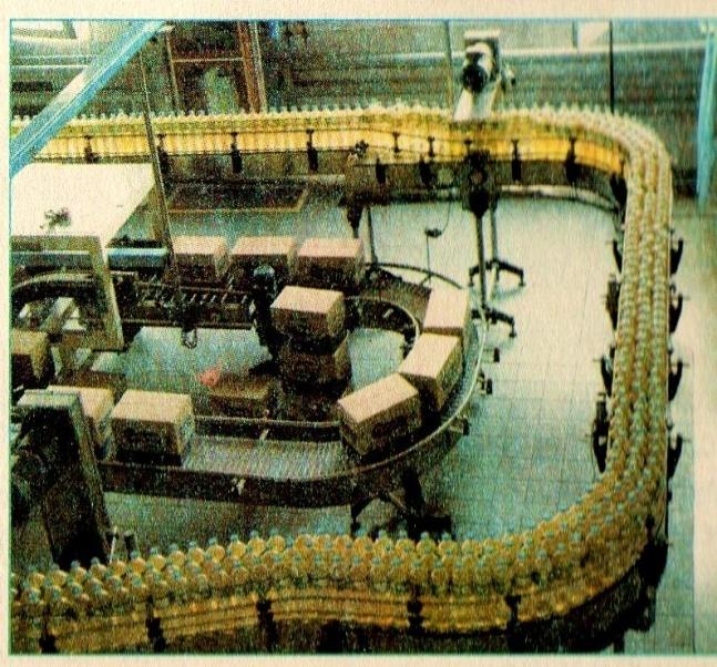 Легка промисловість області розвивається на основі переробки місцевої  сировини (шкіра) і сировини 5a72606d400a6