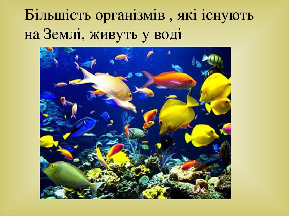 Більшість організмів , які існують на Землі, живуть у воді