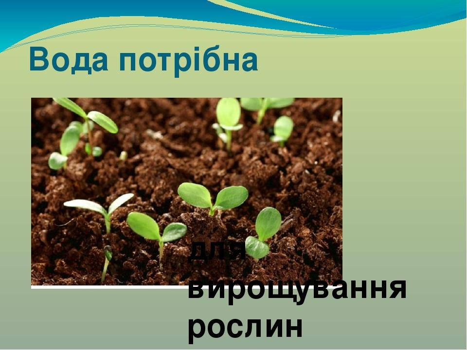 Вода потрібна для вирощування рослин