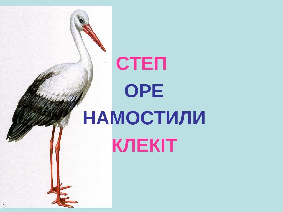 СТЕП ОРЕ НАМОСТИЛИ КЛЕКІТ