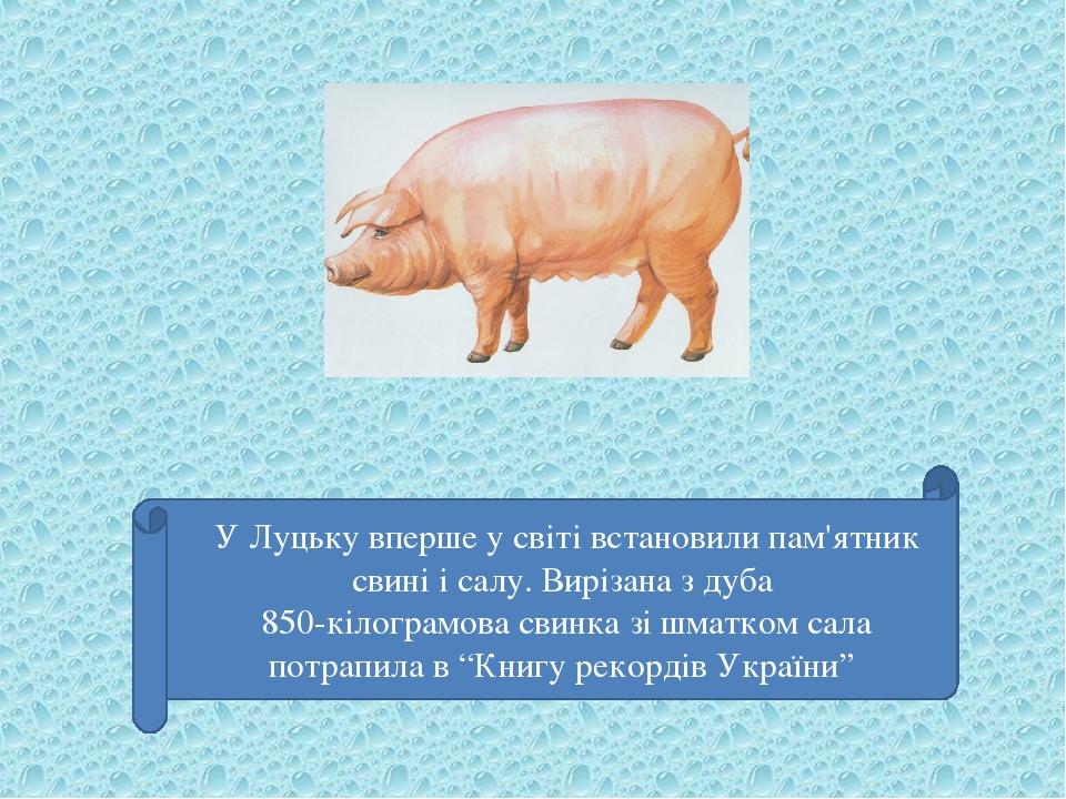 """У Луцьку вперше у світі встановили пам'ятник свині і салу. Вирізана з дуба 850-кілограмова свинка зі шматком сала потрапила в """"Книгу рекордів України"""""""