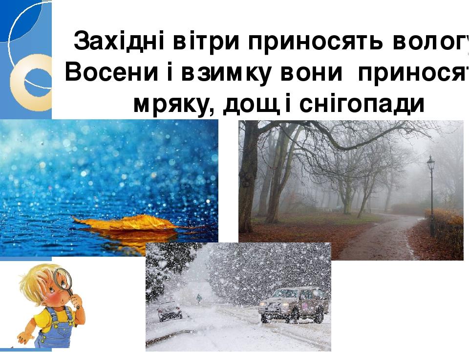 Західні вітри приносять вологу. Восени і взимку вони приносять мряку, дощ і снігопади