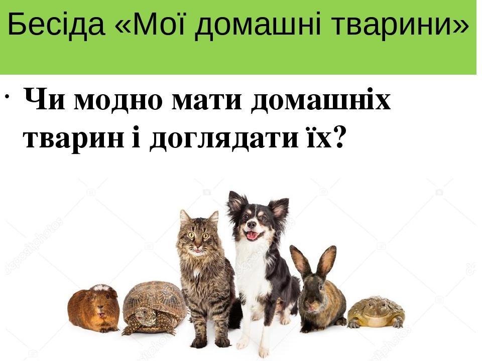 Бесіда «Мої домашні тварини» Чи модно мати домашніх тварин і доглядати їх?