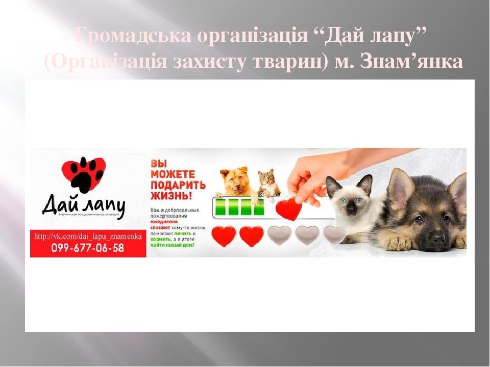 """Громадська організація """"Дай лапу"""" (Організація захисту тварин) м. Знам'янка"""