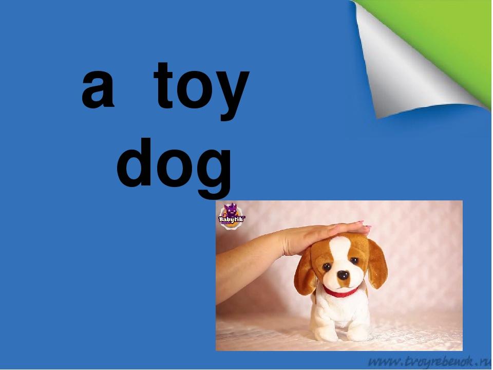 a toy dog