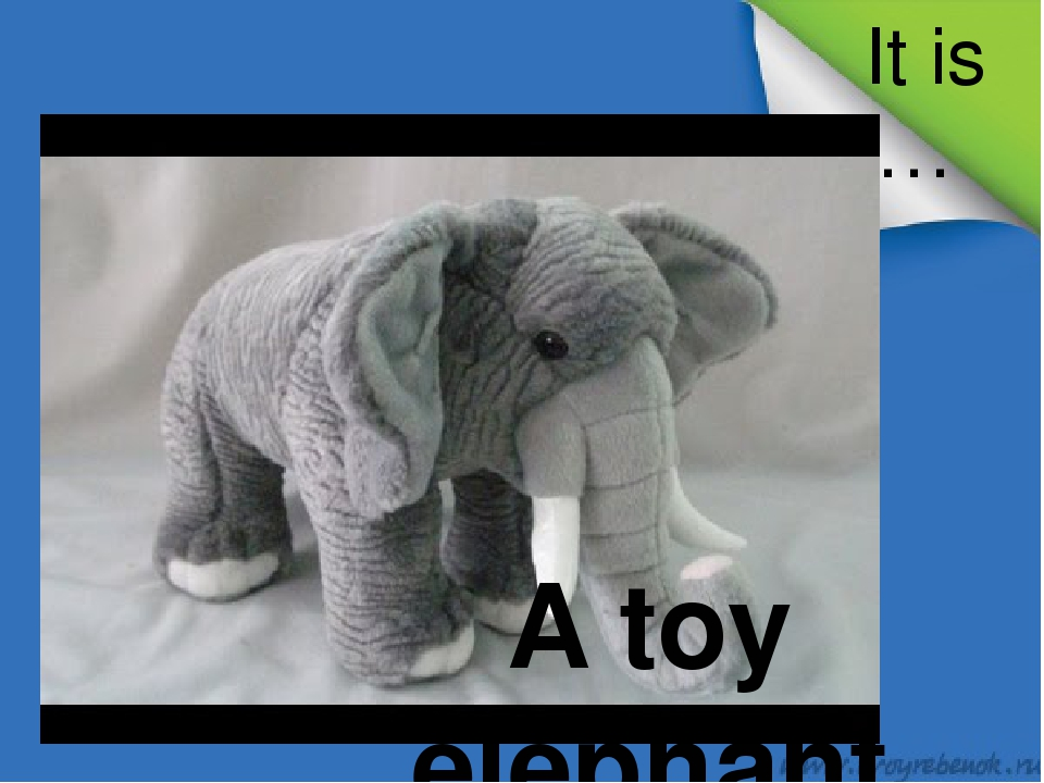 It is … A toy elephant