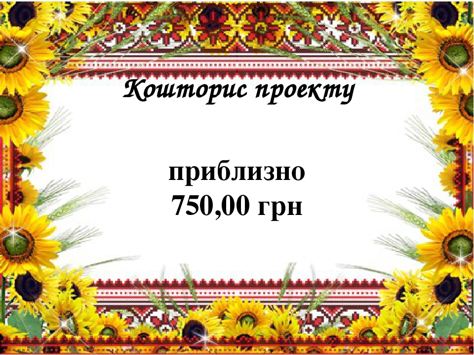 Кошторис проекту приблизно 750,00 грн