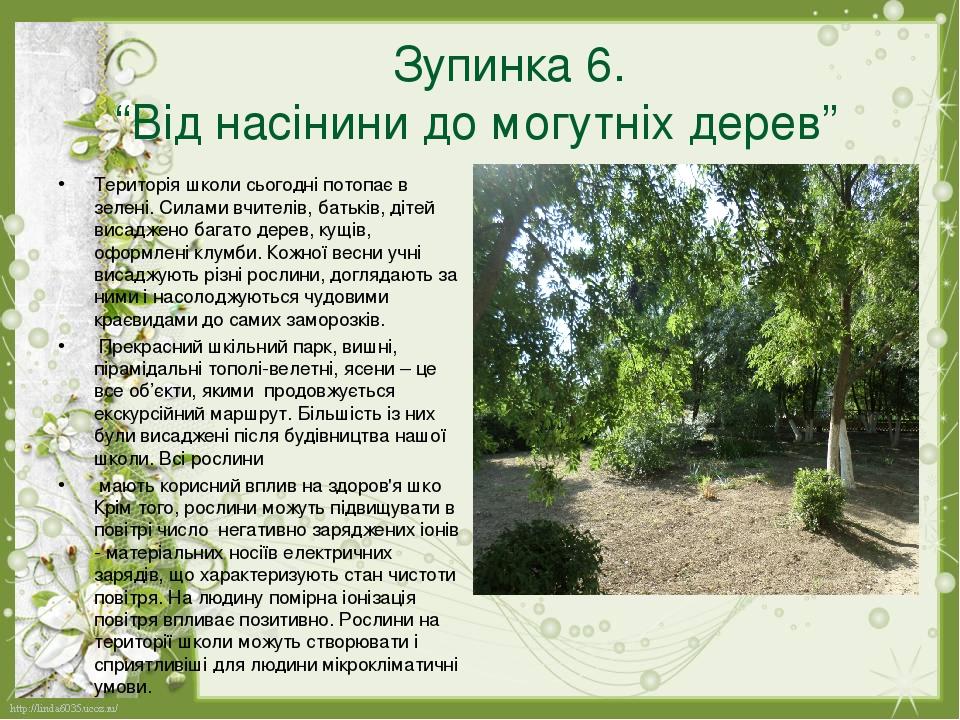 """Зупинка 6. """"Від насінини до могутніх дерев"""" Територія школи сьогодні потопає в зелені. Силами вчителів, батьків, дітей висаджено багато дерев, кущі..."""