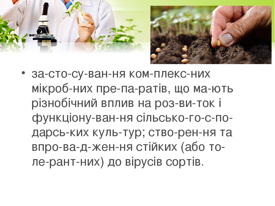 застосування комплексних мікробних препаратів, що мають різнобічний вплив на розвиток і функціонування сільськогосподарських кул...