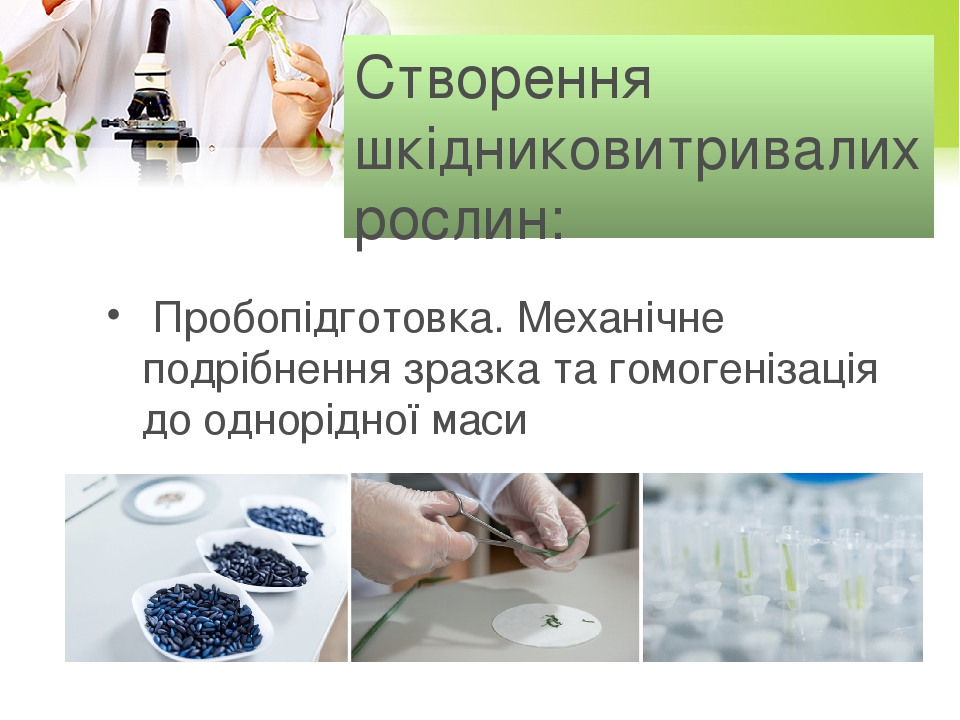 Створення шкідниковитривалих рослин: Пробопідготовка. Механічне подрібнення зразка та гомогенізація до однорідної маси