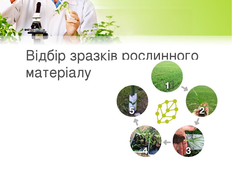 Відбір зразків рослинного матеріалу