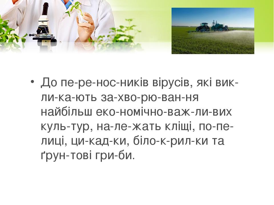 До переносників вірусів, які викликають захворювання найбільш економічно-важливих культур, належать кліщі, попелиці, цикадки, б...