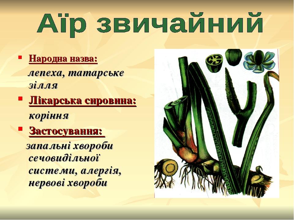 Народна назва: лепеха, татарське зілля Лікарська сировина: коріння Застосування: запальні хвороби сечовидільної системи, алергія, нервові хвороби