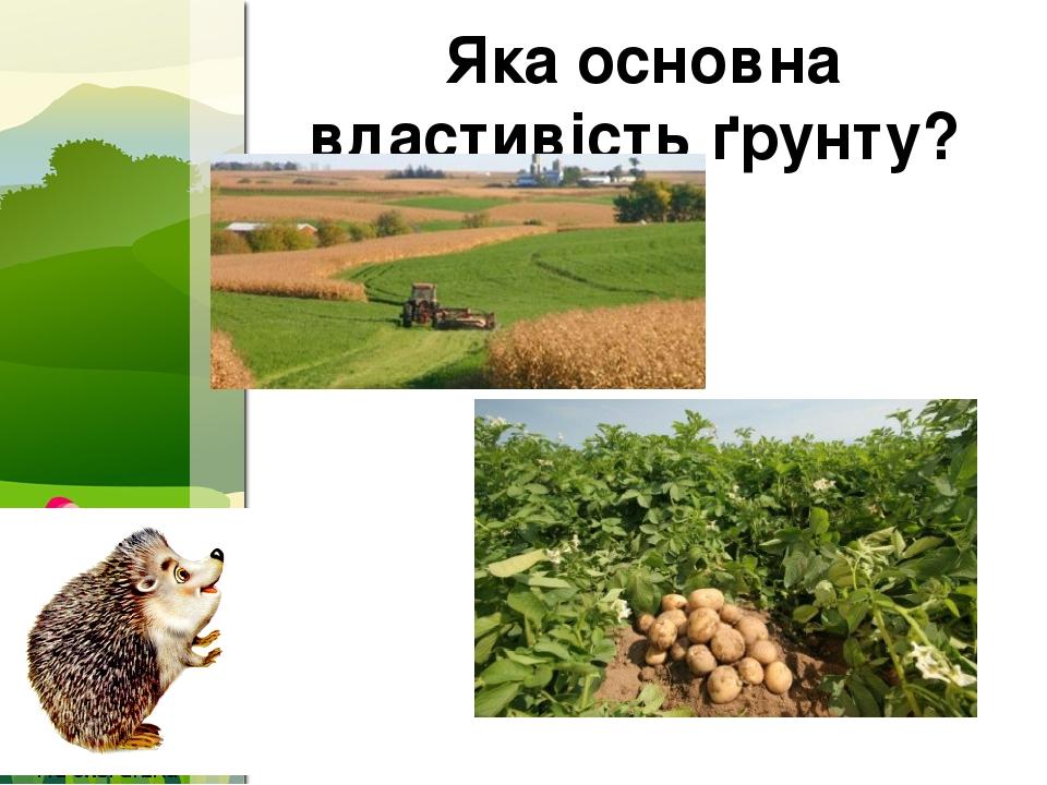 Яка основна властивість ґрунту? ProPowerPoint.Ru