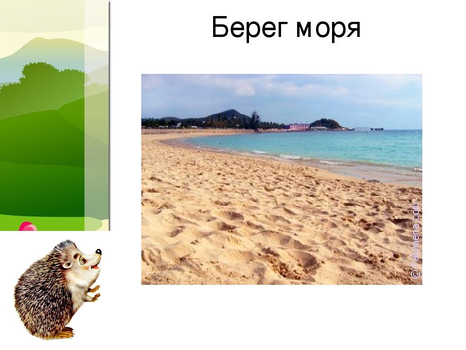 Берег моря ProPowerPoint.Ru