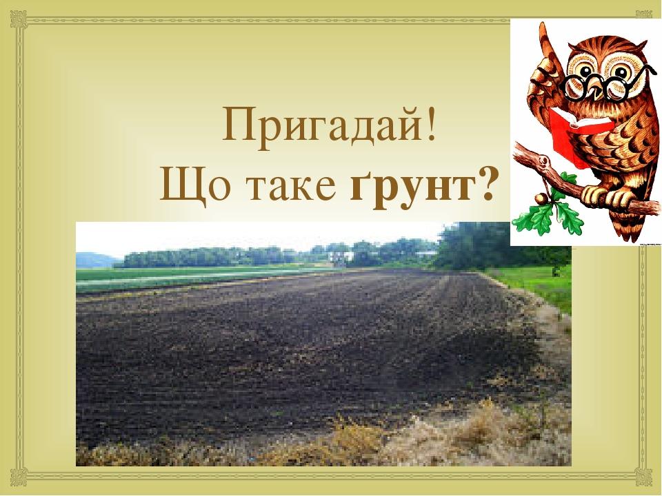 Пригадай! Що таке ґрунт? 