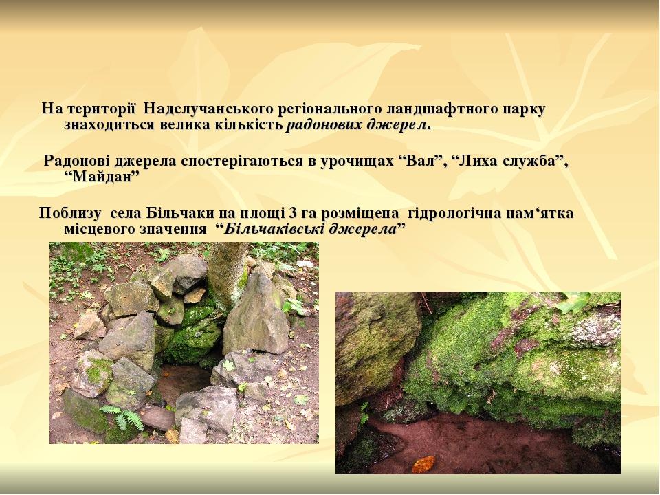 На території Надслучанського регіонального ландшафтного парку знаходиться велика кількість радонових джерел. Радонові джерела спостерігаються в уро...
