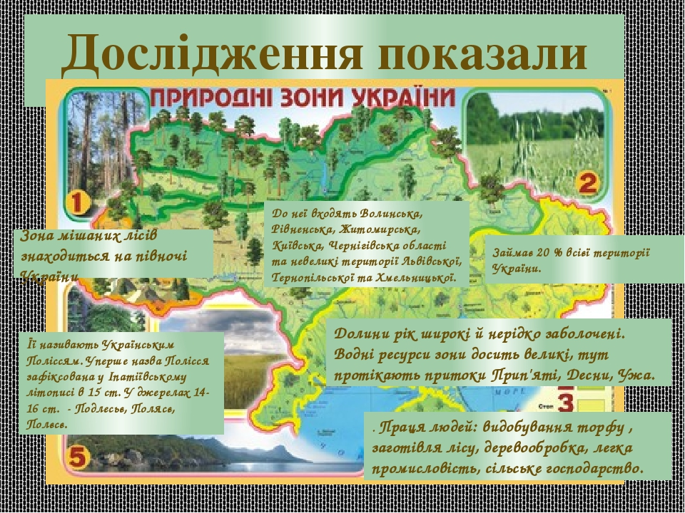 Дослідження показали Зона мішаних лісів знаходиться на півночі України До неї входять Волинська, Рівненська, Житомирська, Київська, Чернігівська об...