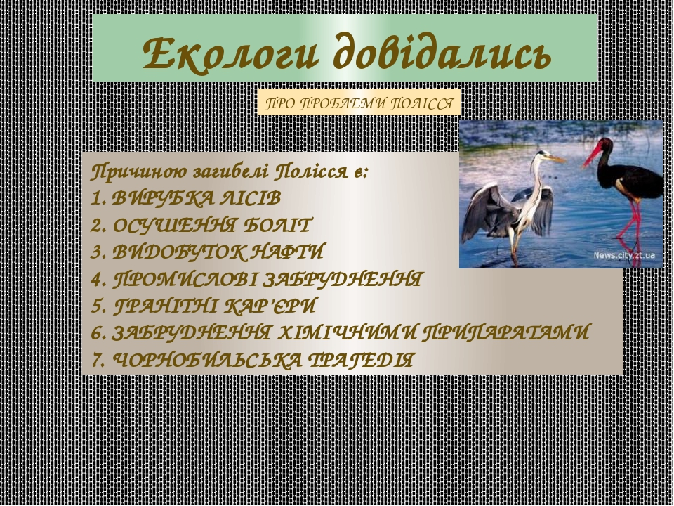 Екологи довідались Причиною загибелі Полісся є: 1. ВИРУБКА ЛІСІВ 2. ОСУШЕННЯ БОЛІТ 3. ВИДОБУТОК НАФТИ 4. ПРОМИСЛОВІ ЗАБРУДНЕННЯ 5. ГРАНІТНІ КАР'ЄРИ...