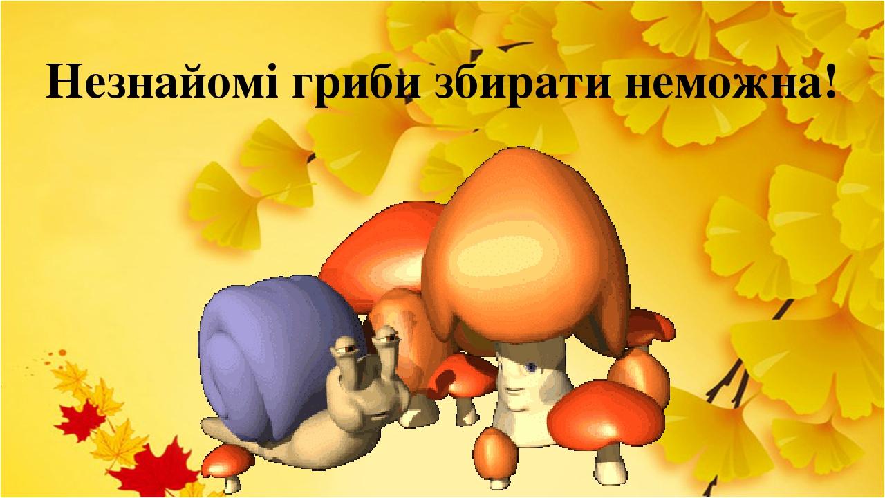 Незнайомі гриби збирати неможна!
