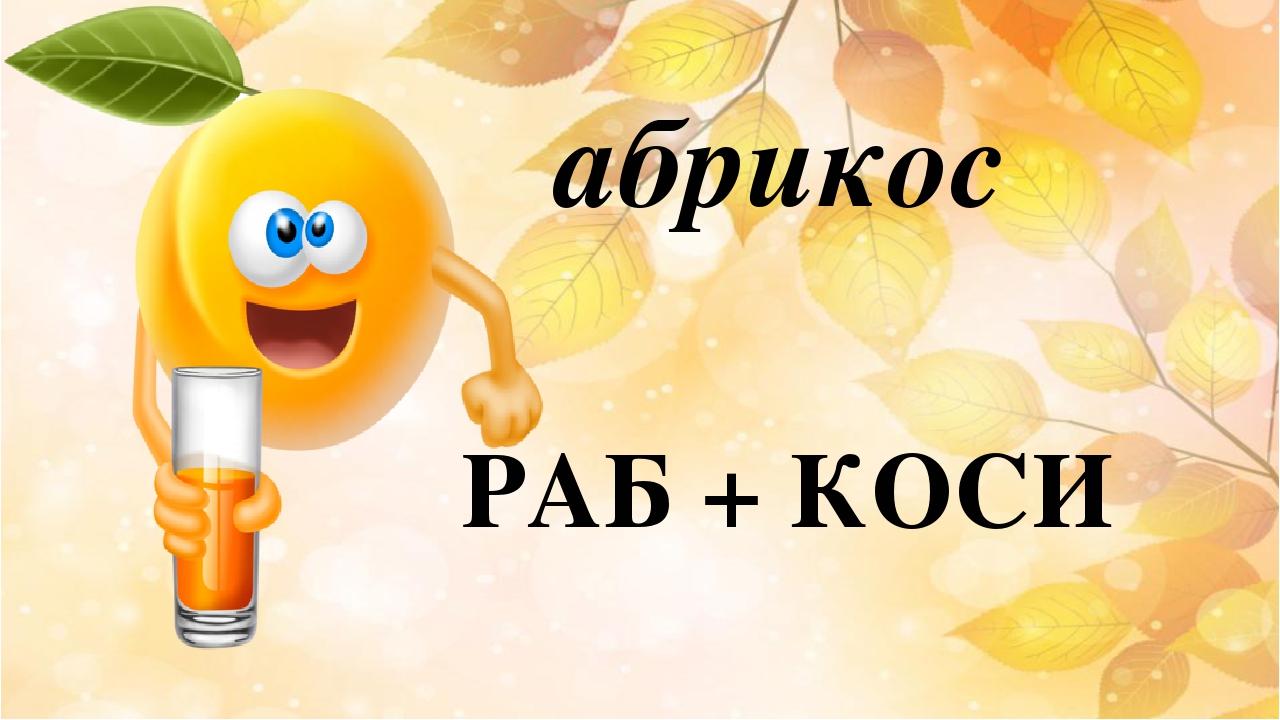 РАБ + КОСИ абрикос