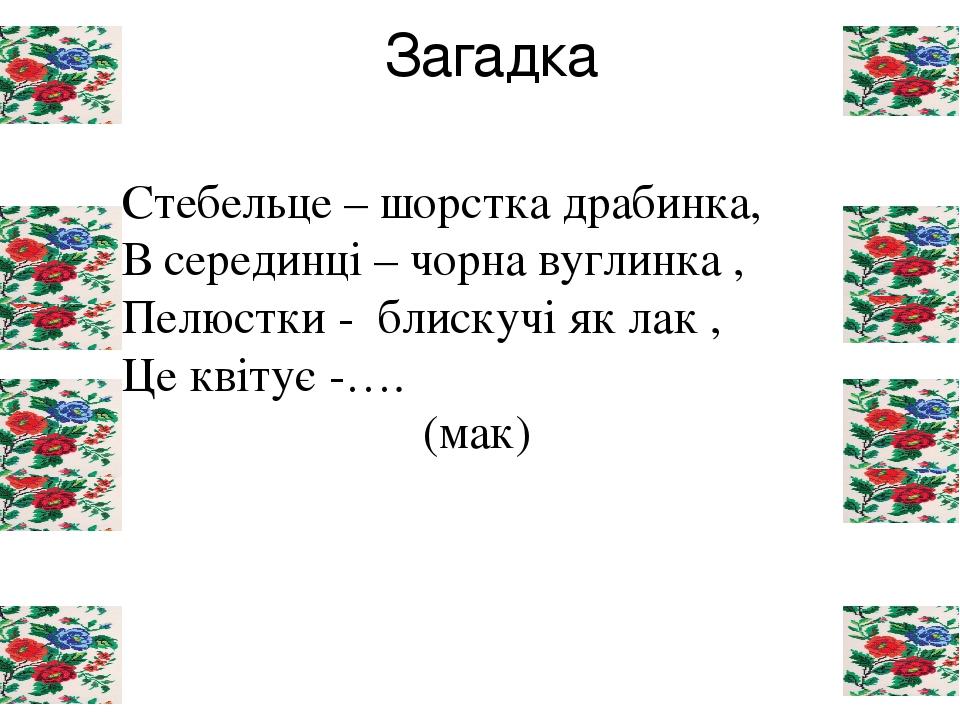 Загадка Стебельце – шорстка драбинка, В серединці – чорна вуглинка , Пелюстки - блискучі як лак , Це квітує -…. (мак)