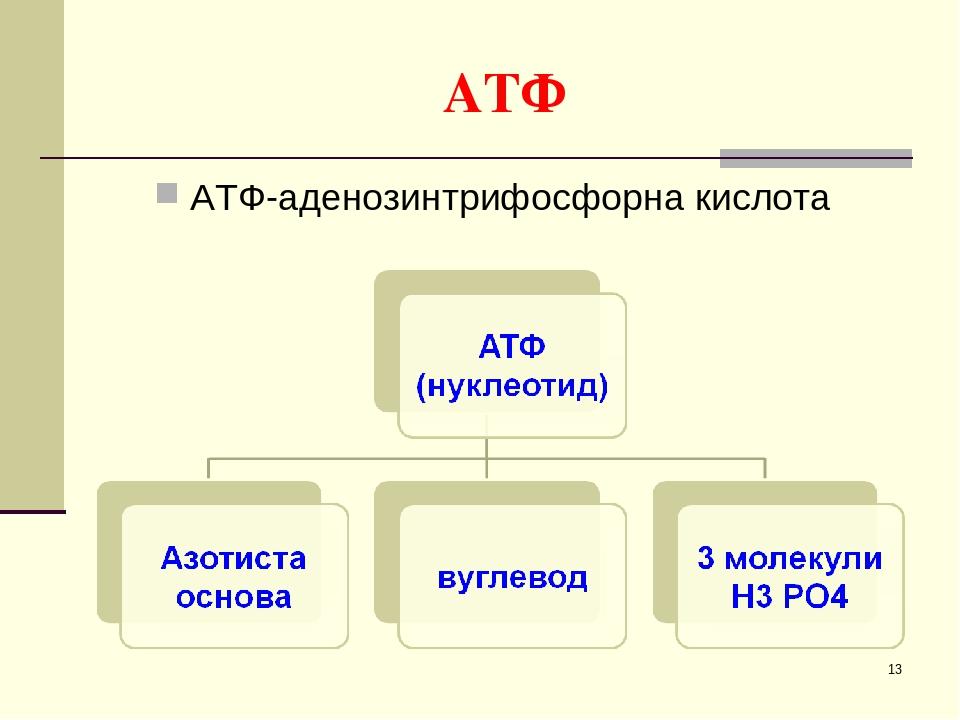 * АТФ АТФ-аденозинтрифосфорна кислота