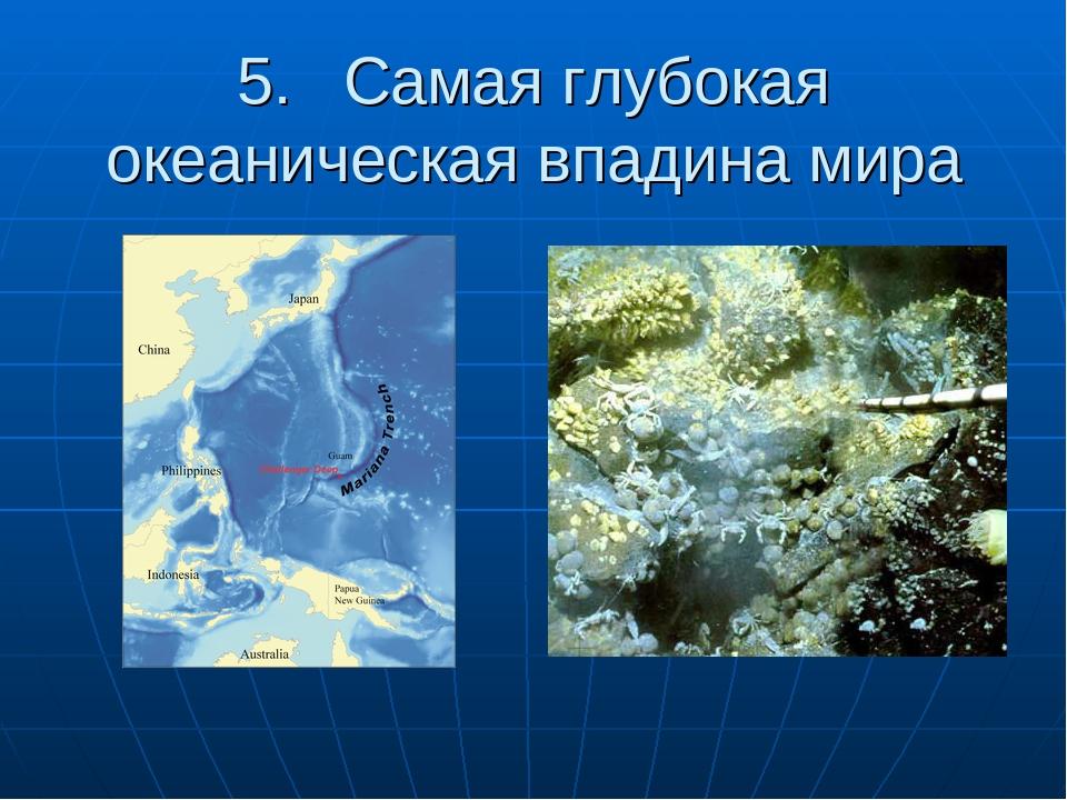 5. Самая глубокая океаническая впадина мира