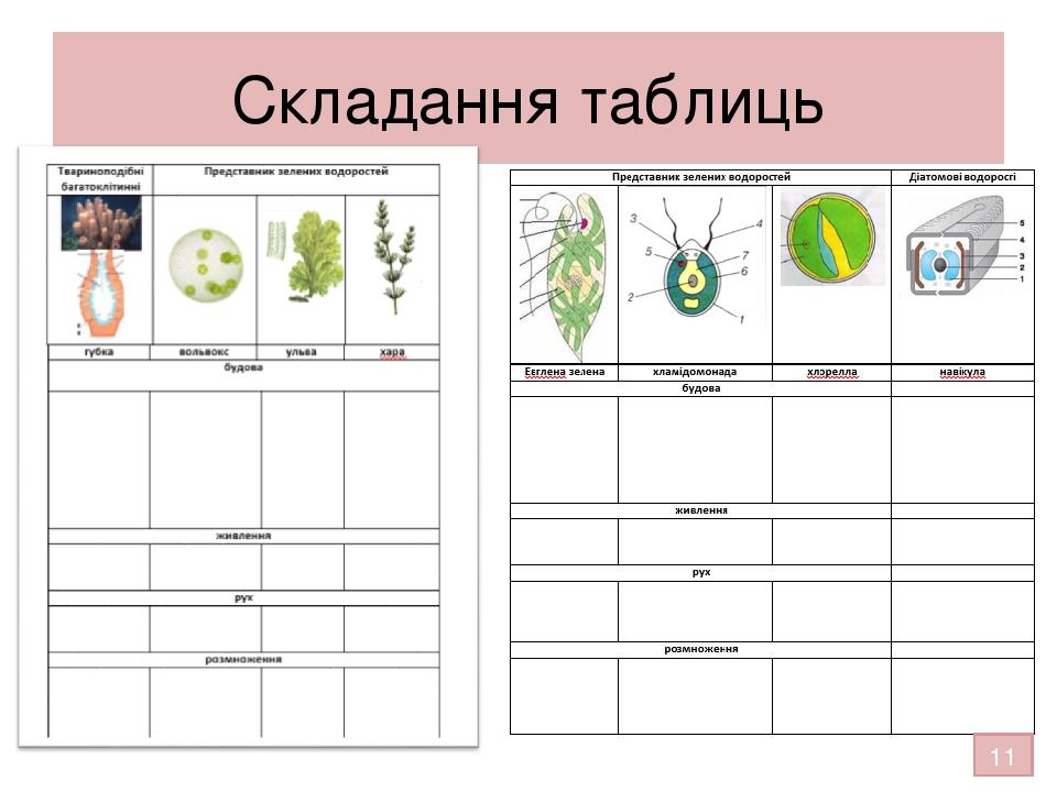 Складання таблиць 11
