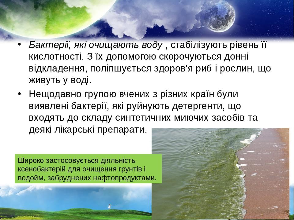 Бактерії, які очищають воду, стабілізують рівень її кислотності. З їх допомогою скорочуються донні відкладення, поліпшується здоров'я риб і рослин...