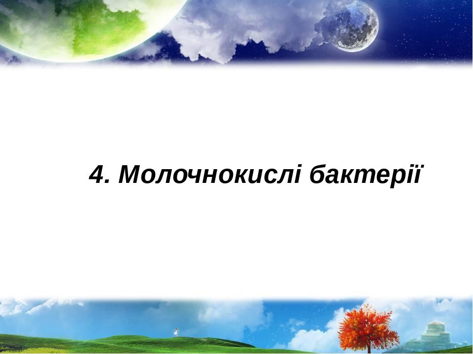 4. Молочнокислі бактерії