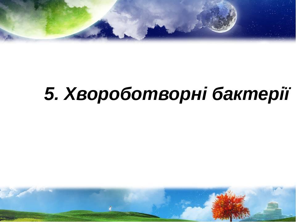 5. Хвороботворні бактерії