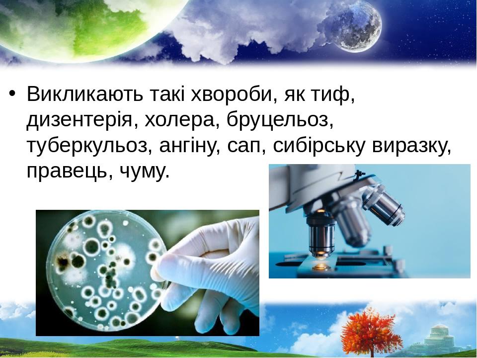 Викликають такі хвороби, як тиф, дизентерія, холера, бруцельоз, туберкульоз, ангіну, сап, сибірську виразку, правець, чуму.