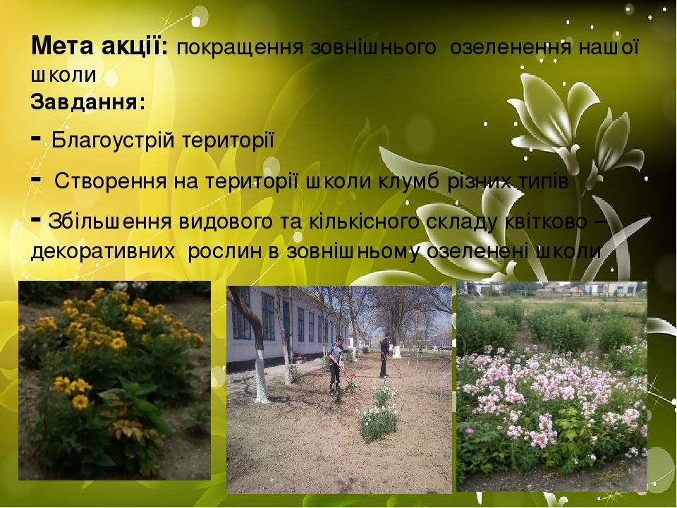 Мета акції: покращення зовнішнього озеленення нашої школи Завдання: - Благоустрій території - Створення на території школи клумб різних типів - Збі...