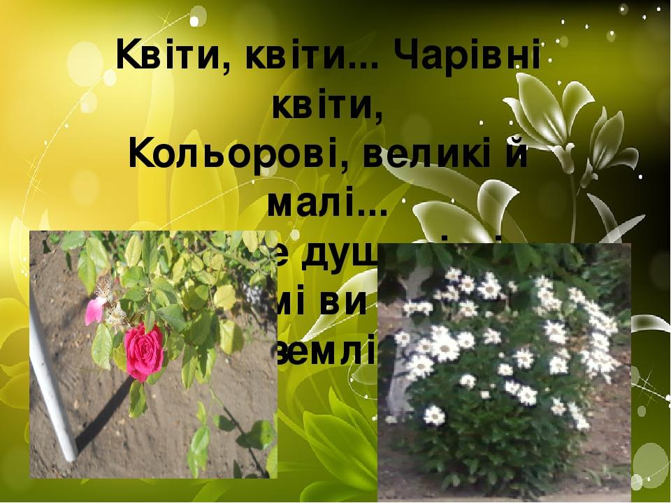 Виховувати рідного краю Квіти, квіти... Чарівні квіти, Кольорові, великі й малі... Ви умієте душу зігріти, Бо й самі ви — душа землі.