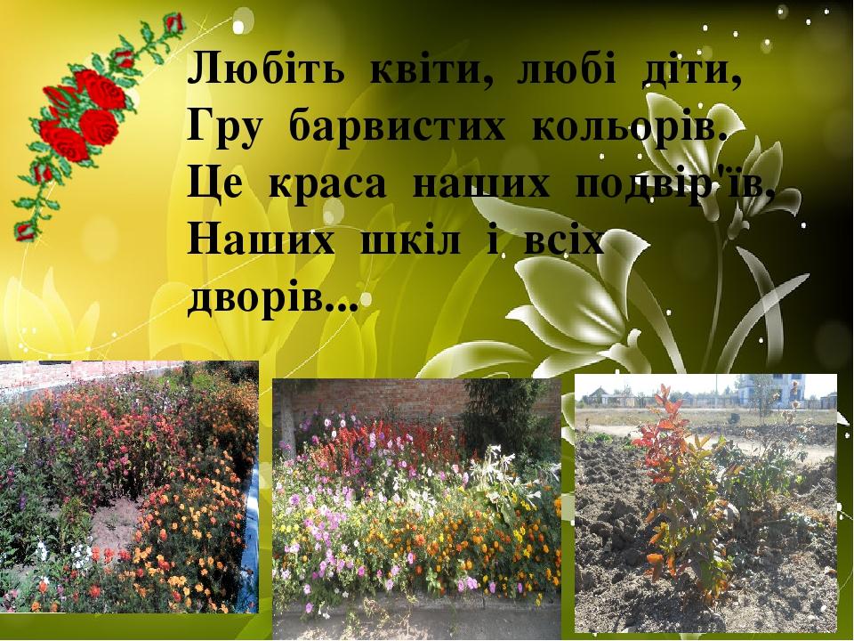 Любіть квіти, любі діти, Гру барвистих кольорів. Це краса наших подвір'їв, Наших шкіл і всіх дворів...