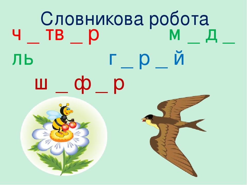 Словникова робота ч _ тв _ р м _ д _ ль г _ р _ й ш _ ф _ р