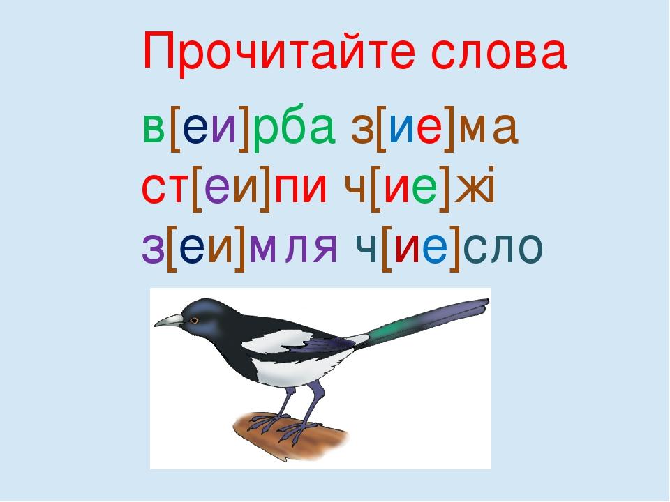 Прочитайте слова в[еи]рба з[ие]ма ст[еи]пи ч[ие]жі з[еи]мля ч[ие]сло