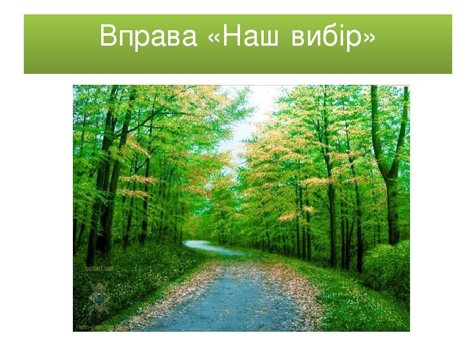 Вправа «Наш вибір»