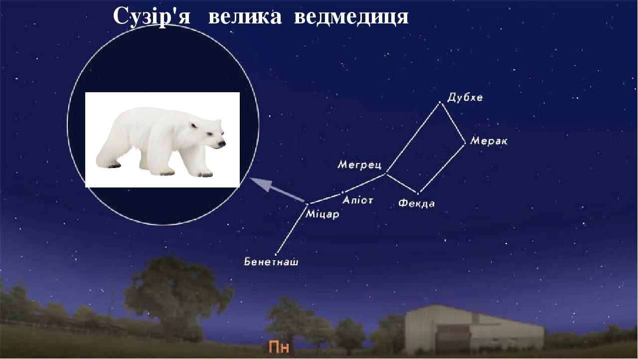 Сузір'я велика ведмедиця