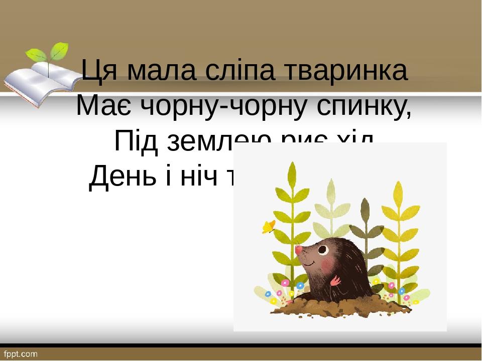 Ця мала сліпа тваринка Має чорну-чорну спинку, Під землею риє хід День і ніч трудяга – … .