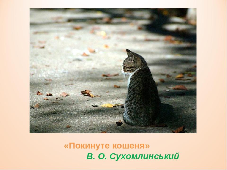 «Покинуте кошеня» В. О. Сухомлинський