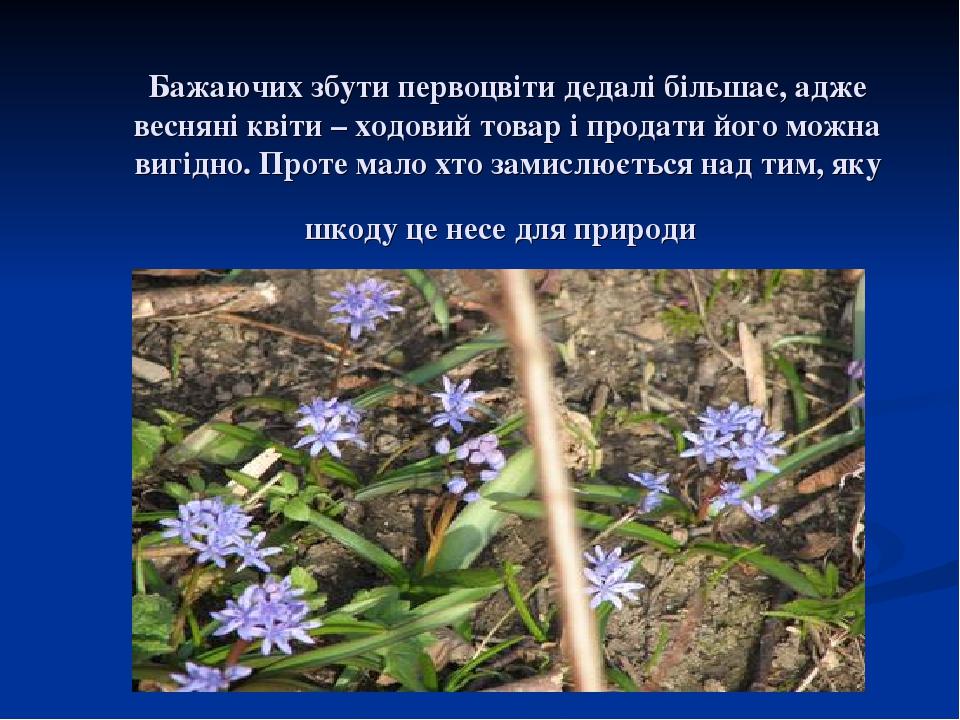 Бажаючих збути первоцвіти дедалі більшає, адже весняні квіти – ходовий товар і продати його можна вигідно. Проте мало хто замислюється над тим, яку...