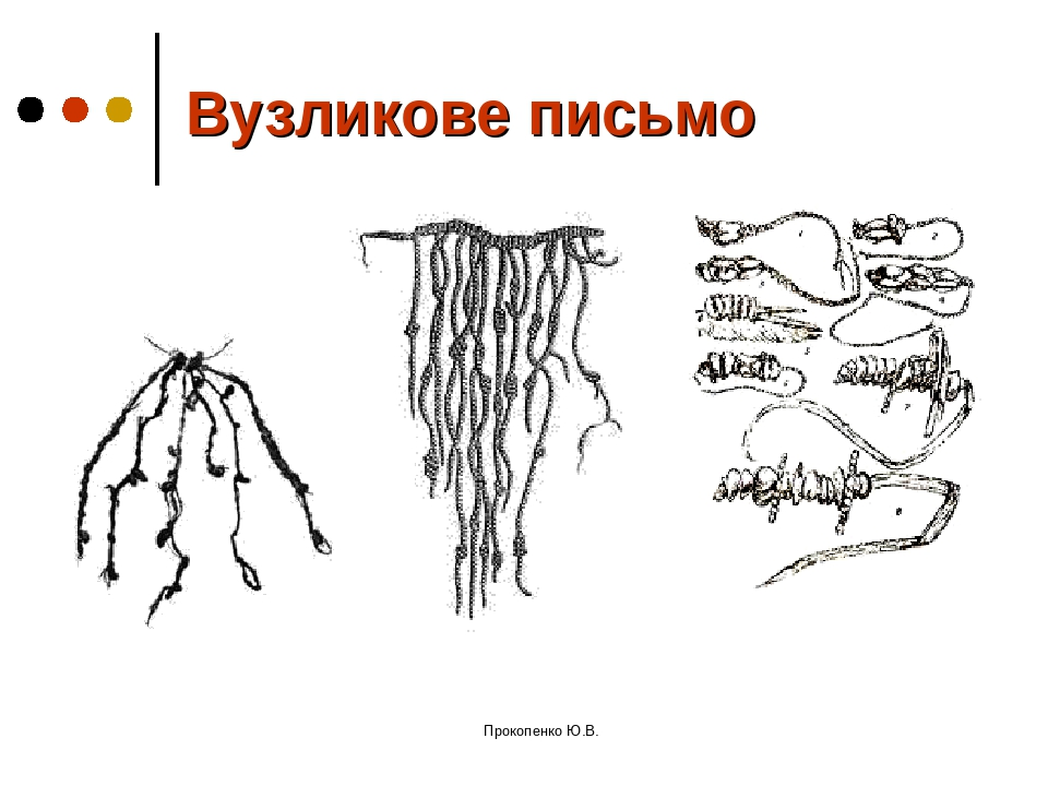 Вузликове письмо Прокопенко Ю.В. Прокопенко Ю.В.