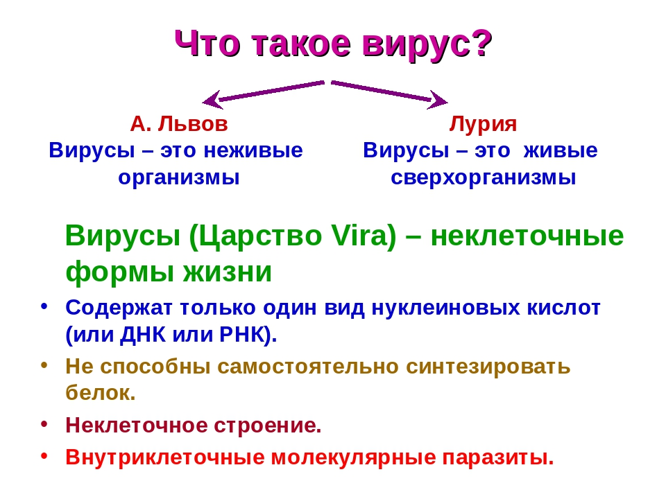 Что такое вирус? Вирусы (Царство Vira) – неклеточные формы жизни Содержат только один вид нуклеиновых кислот (или ДНК или РНК). Не способны самосто...